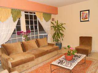 Bulls eye of Lima, charming rental