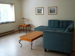 Harvard Square Furnished Apartments rentals, Cambridge