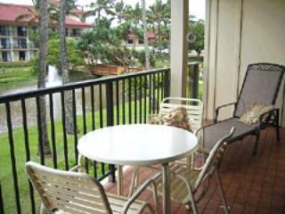 Hawaii (Lihue, Kauai) Ocn Vw Condo w/KITCHEN - $99