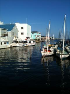 Belize City boat Dock, walking distance to Bella Sombra Guest House