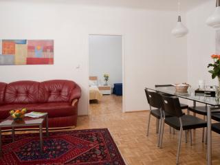 Spacious flat ApF21/18, Vienna