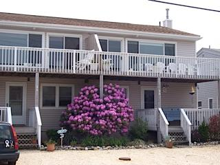 Long Beach Island bay view, Harvey Cedars