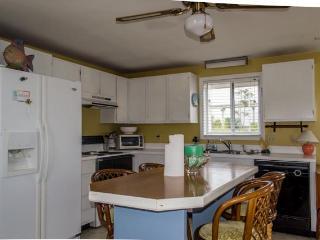 Full Kitchen: salt, paper, paper towels, mustard, ketchup, flour, toaster oven, microwave,dishwasher