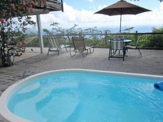 Inn Paradise  - 4 bedroom pool and spa St John Villa- 2 Decks -Great Views