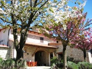 Podere Vignola farmhouse near Florence - Giardino