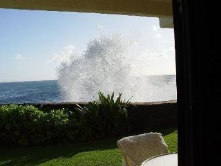 Roll out of bed and into the ocean at Poipu Shores 106A, Koloa