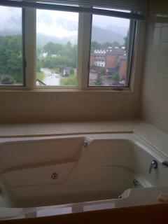 Oversized jacuzzi master bath