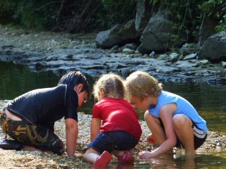 Kids discovering cool things at the creek
