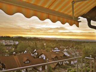 4-Star Apartment with Black Forest & Alsace View, Sulzburg