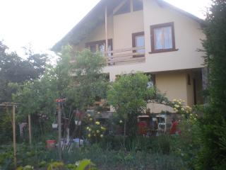 House for rent in beautiful maramures