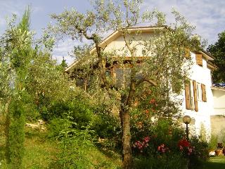 Charming Villa  with smimmingpool near Rome, Magliano Sabina