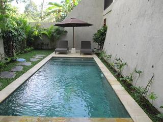Villa Nangka - Private, tranquil, glorious views, Ubud