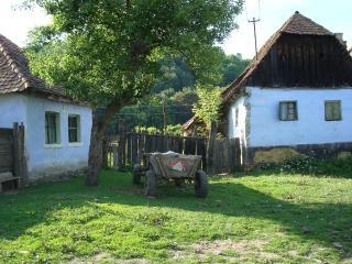 Transylvanian Eco-Cultural  Tourism - Villa