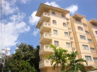 Beautiful new large 1 bedroom near Zona Colonial