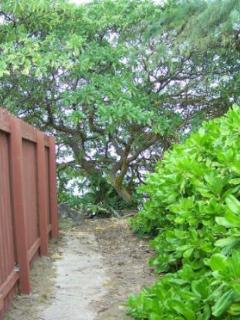 Your private path to the beach.