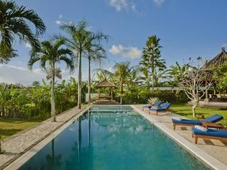 Junno Villa - Luxury 5BR Rice Field View, , Canggu