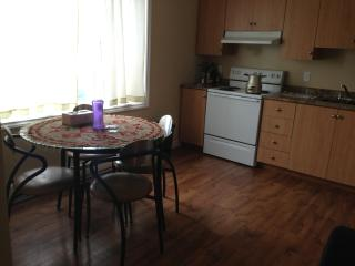 2+1 bedroom fully fernished apartment, St. John's