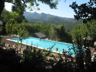 Comfortable safaritent, swimmingpool, restaurant, Prades