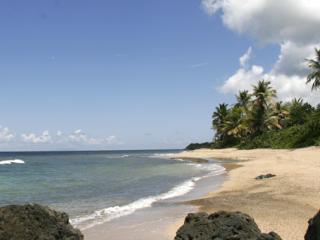 Surf Side Vieques - Salt Water Pool, Ocean View