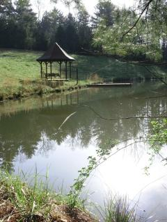 Pond in the lower pasture