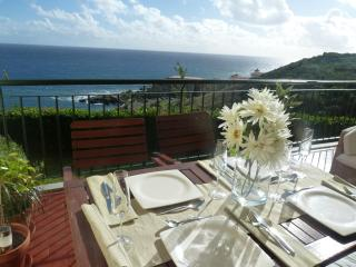 Oceanic Apartment -Madeira Great Views - Free WIFI, Canico