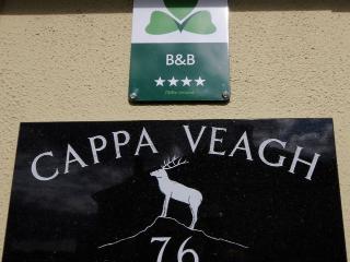 Cappa Veagh B&B, Galway