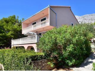 Villa Ana - Medici, Mimice