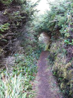 one of many short or long hiking trails