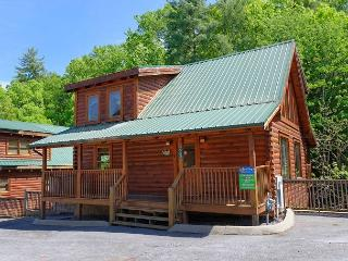 Pigeon Forge Resort Cabin with Pool Table, Foosball, Theater Room and Hot Tub