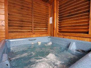 Hot Tub, Dream Come True