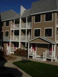 #602 Capers Condominium 7834