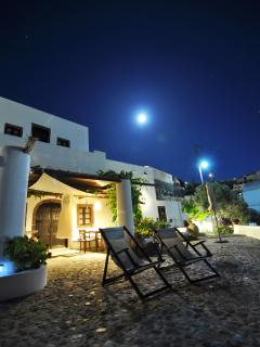 Fava on the moonlight