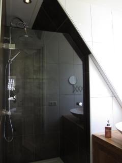 Bathroom Stuurboordkamer