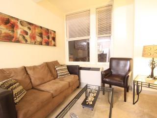 Fully Furnished 1 Bedroom Downtown Memphis Apt