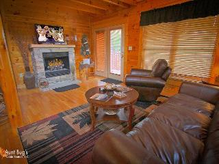 Family room on the main level features pull out sleeper sofa, el