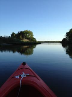 Kayaking in Wildlife refuge