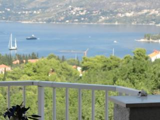 Sea view apartment close to center ,2+2, Cavtat