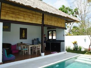 Villa Zitta 1bd for rent in Bali, Ungasan