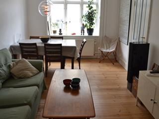 Newly renovated Copenhagen apartment at Noerrebro