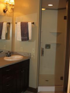 Double headed sheer in master bathroom.