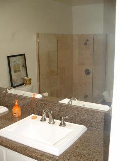 Master bath with doorless sunken shower