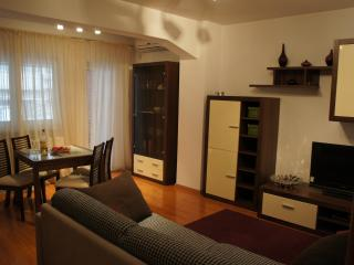 Amazing 1 bedroom next to Cismigiu Park, Bucharest