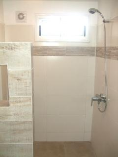 Groundfloor bathroom (shower)