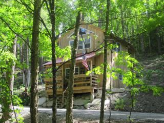 Hinkley Brook Cabin, Romantic Getaway In The Trees