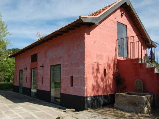 Cottage in a vineyard - 30 km from Oporto