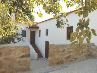Cosy Holiday Cottage - with all modern amenities, Figueiro dos Vinhos