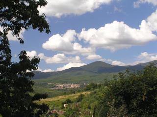 Beautiful Rental Farmhouses in Tuscany, Santa Fiora