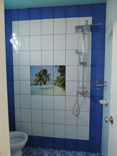 The new guest room showers
