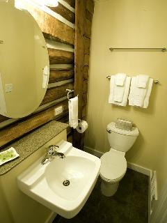 Bathroom with original wood logs exposed