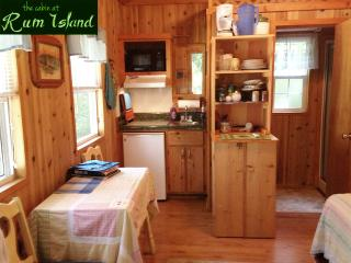 kitchenette on left, bathroom/shower on right